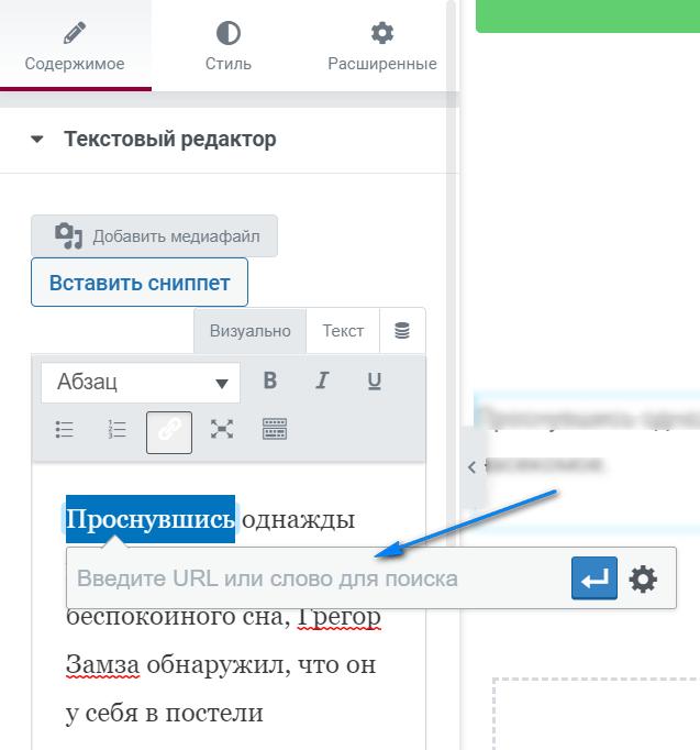 kak dobavit ssylku v tekstovyj vidzhet elementor 004